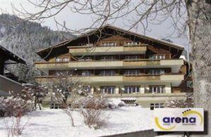 Hotel ARENA STEINMATTLI ADELBODEN