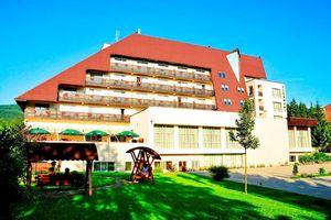 Hotel CLERMONT BALNEO