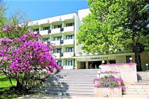 Hotel LEBED SF CONSTANTIN SI ELENA