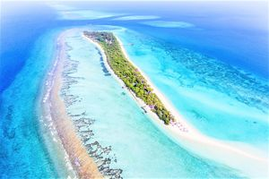 Hotel PALM BEACH RESORT AND SPA LHAVIYANI ATOLL