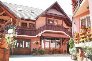Hotel PENSIUNEA SZIKLAKERT Harghita