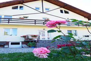Hotel VILA IULIA Bran