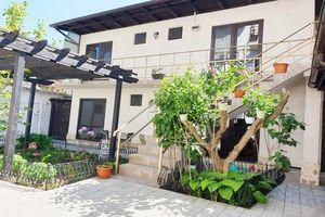 Hotel VILA VITA DE VIE Costinesti