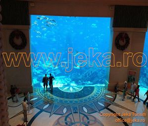 Poze ATLANTIS THE PALM 10