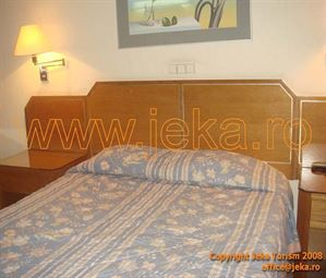 Poze Hotel IONIS ATENA GRECIA