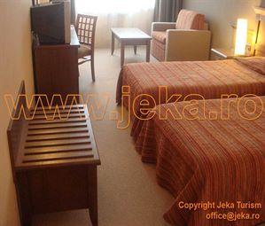 Poze Hotel LION