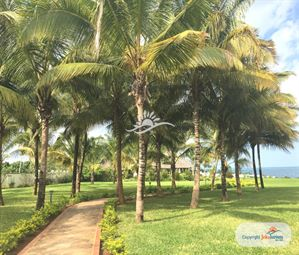 Poze SEA CLIFF RESORT AND SPA 11