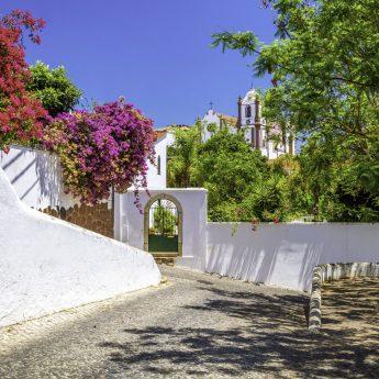FAO_Silves_Algarve_1126888992_RFIS_0419