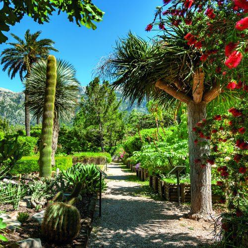 PMI_Soller_Jardin_Botanico_0117_07