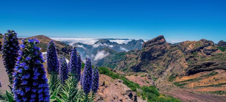 FNC Pico do Arreiro 0316 01 RGB 136 DPI For Web