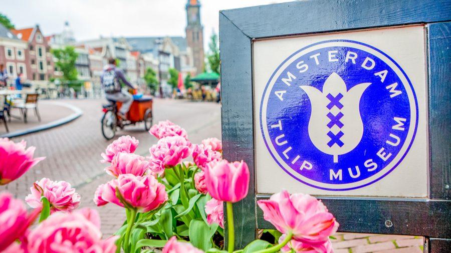 Ams Amsterdam Tulip Museum 0716 03