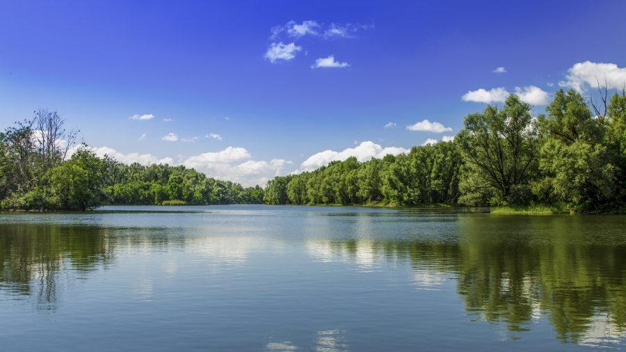 Croatia Kopacki Rit Nature Park 1004745948 Rfis 1218