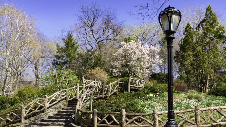 Ewr Shakespeare Garden 467105147 Rfis 1218