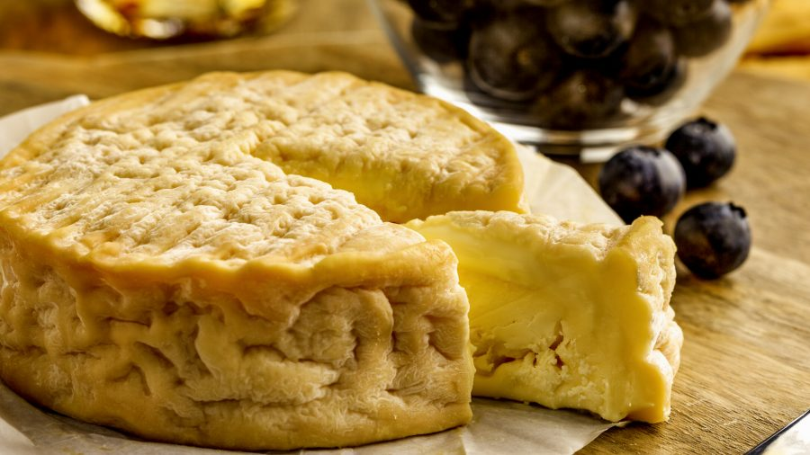 Epoisses Cheese Close Up 637652780 Rfis 1218