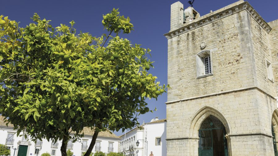 FAO_Faro_Cathedral_of_Faro_2_0217_64
