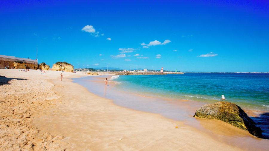 FAO Praia do Canavial 0515 01 RGB 136 DPI For Web