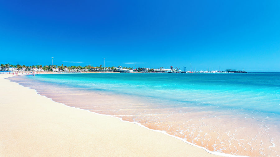 FUE Caleta Beach 0117 05 RGB 136 DPI For Web