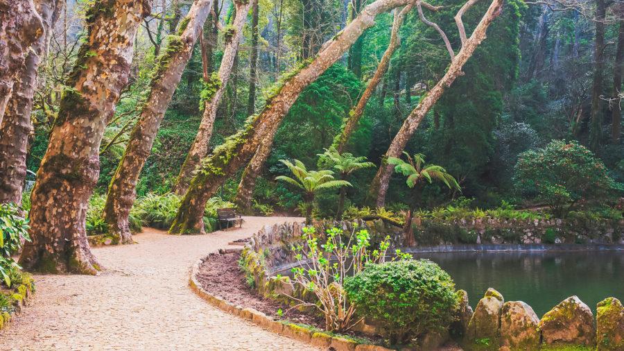 LIS_Palacio_de_Pena_Gardens_Sintra_951451400_Getty_RGB-136-DPI-For-Web