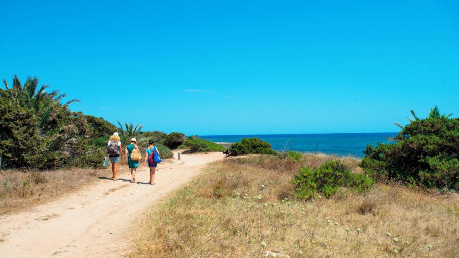 MAH_Punta_Prima_Walking_routes_0117_07_RGB-136-DPI-For-Web
