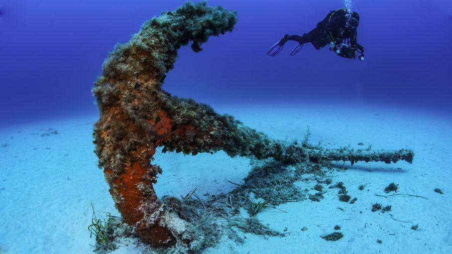 Mla Scuba Diving 600995496 Rfis 1218