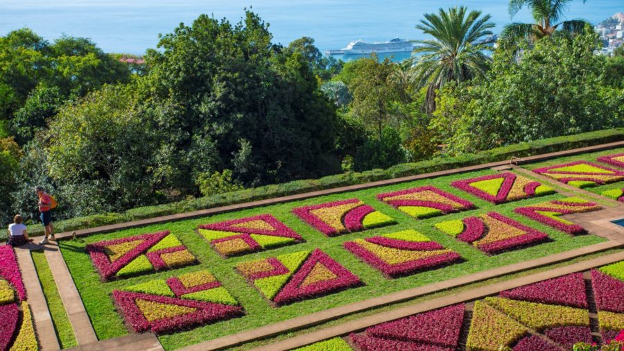 Natureza_032 Andre-Carvalho-Botanical-Garden-v2
