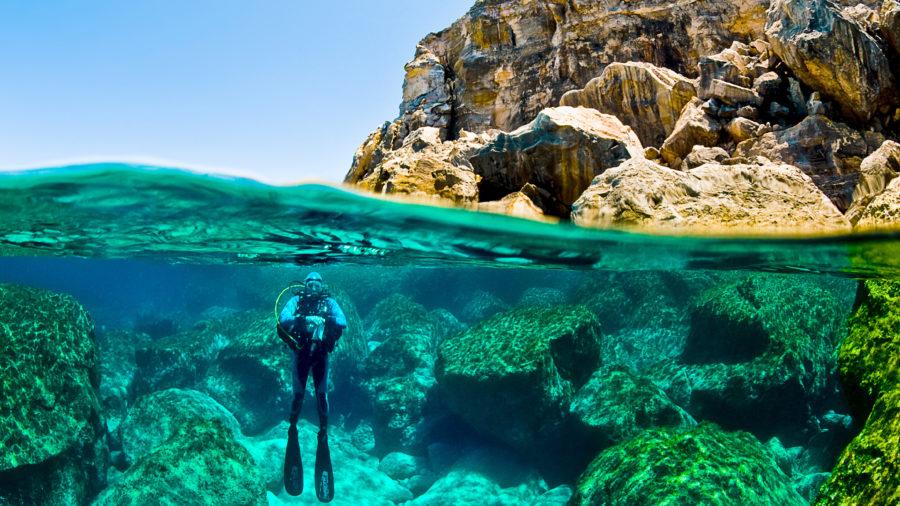 Scuba diving Filfla
