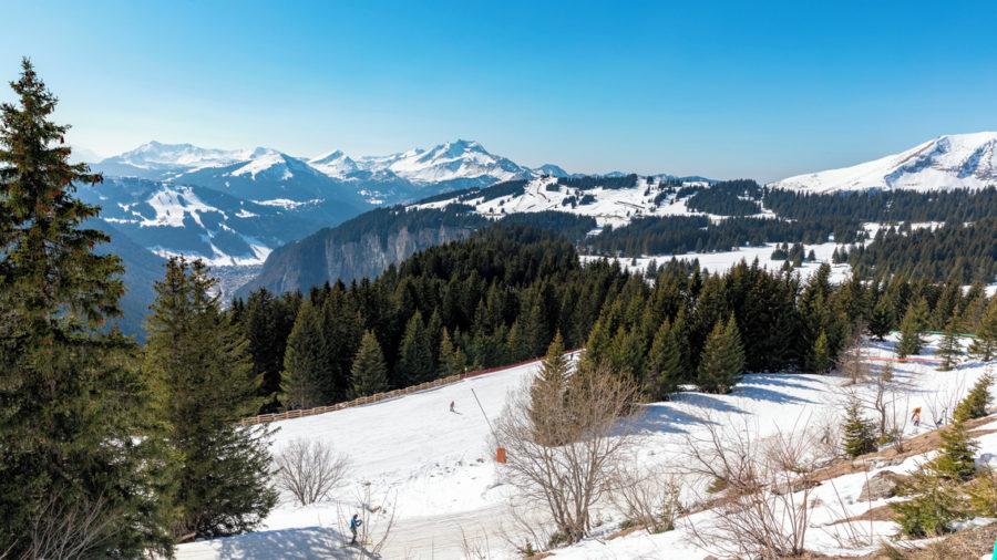 Ski_Shoot_2019-121_RGB-72-DPI-For-MSOffice