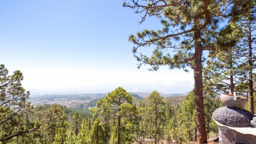 Tfs Mount Teide National Park 0117 06