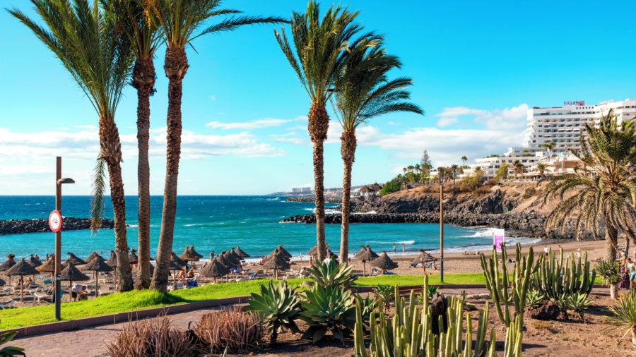 TFS_Playa_De_Las_Americas_1018_14_RGB-136-DPI-For-Web_Playa-De-Las-Americas