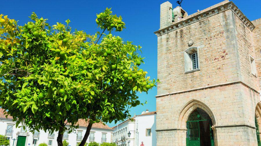 Fao Faro Cathedral Of Faro 2 0217 64