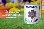 Ronseal Garden Paint 250ml