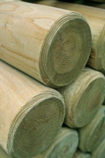 Timber stakes & posts