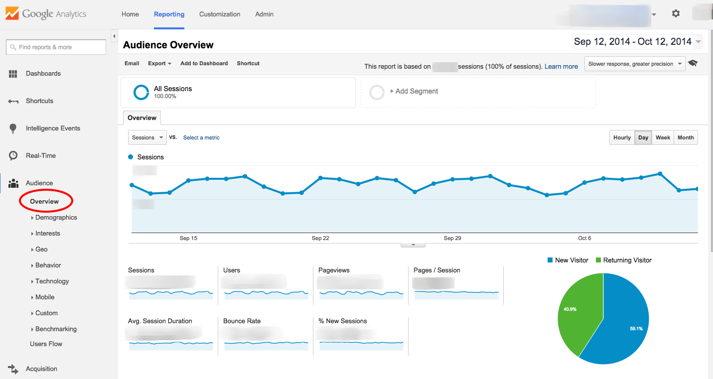 Google Analytics Audience Overview Tab