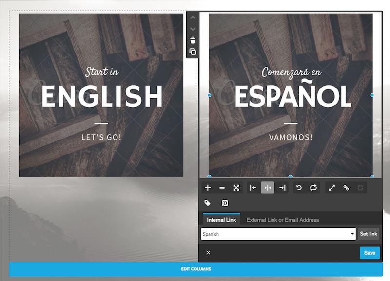 Multilingual landing page
