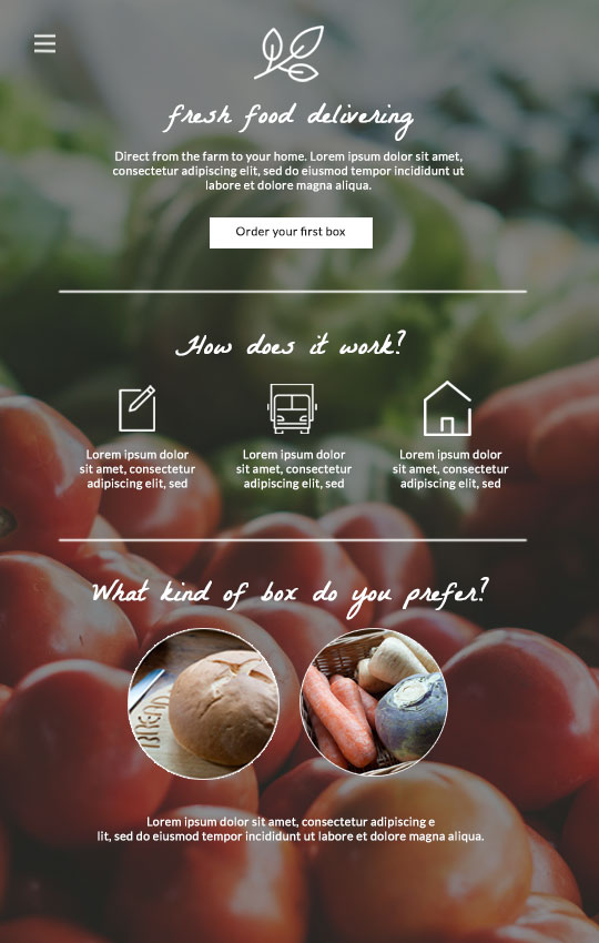 This is an example of a one page website.