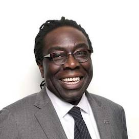Lord (Victor) Adebowale CBE