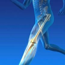 Premier Orthopedic Solutions Inc.