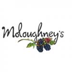 Moloughney's