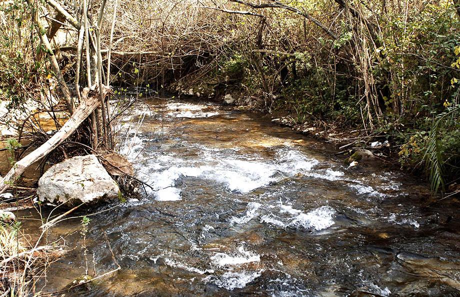 Sendero del río Majaceite