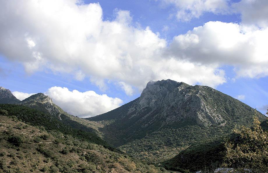 Crestería de la Sierra del Pinar