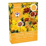 Bee Friends Seed Shaker Summer Sunshine (018223)