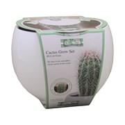 G Plants Mexican Giant Cactus Grow Set (041327)