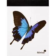 "Silvine Animal Notebook 4x3"" (054AN)"