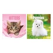 Square Calendars Puppies & Kittens Asst (0560)