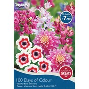 Garden Greats 100 Days Of Colour Collection (SV306)