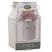 Bee Milkchurn Sweet Pea (120098)