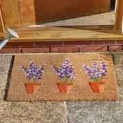 Smart Garden Lavenders Decoir Doormat 75x45 (5511041)