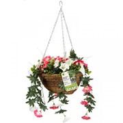 Smart Garden Easy Baskets Summer Bloom (5040064)