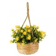Smart Garden Basket Bouquet Florets (5040055)