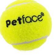Petface 5 Pack Mini Super Tennis Balls (21501)